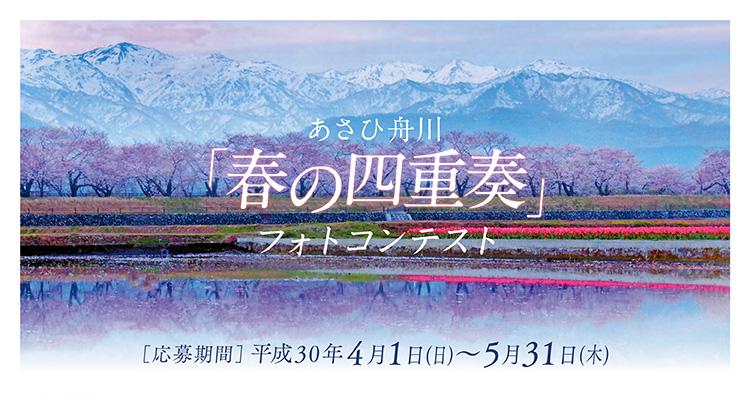 あさひ舟川「春の四重奏」フォトコンテスト2018
