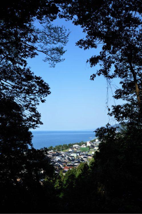 鹿島樹叢からの覗き
