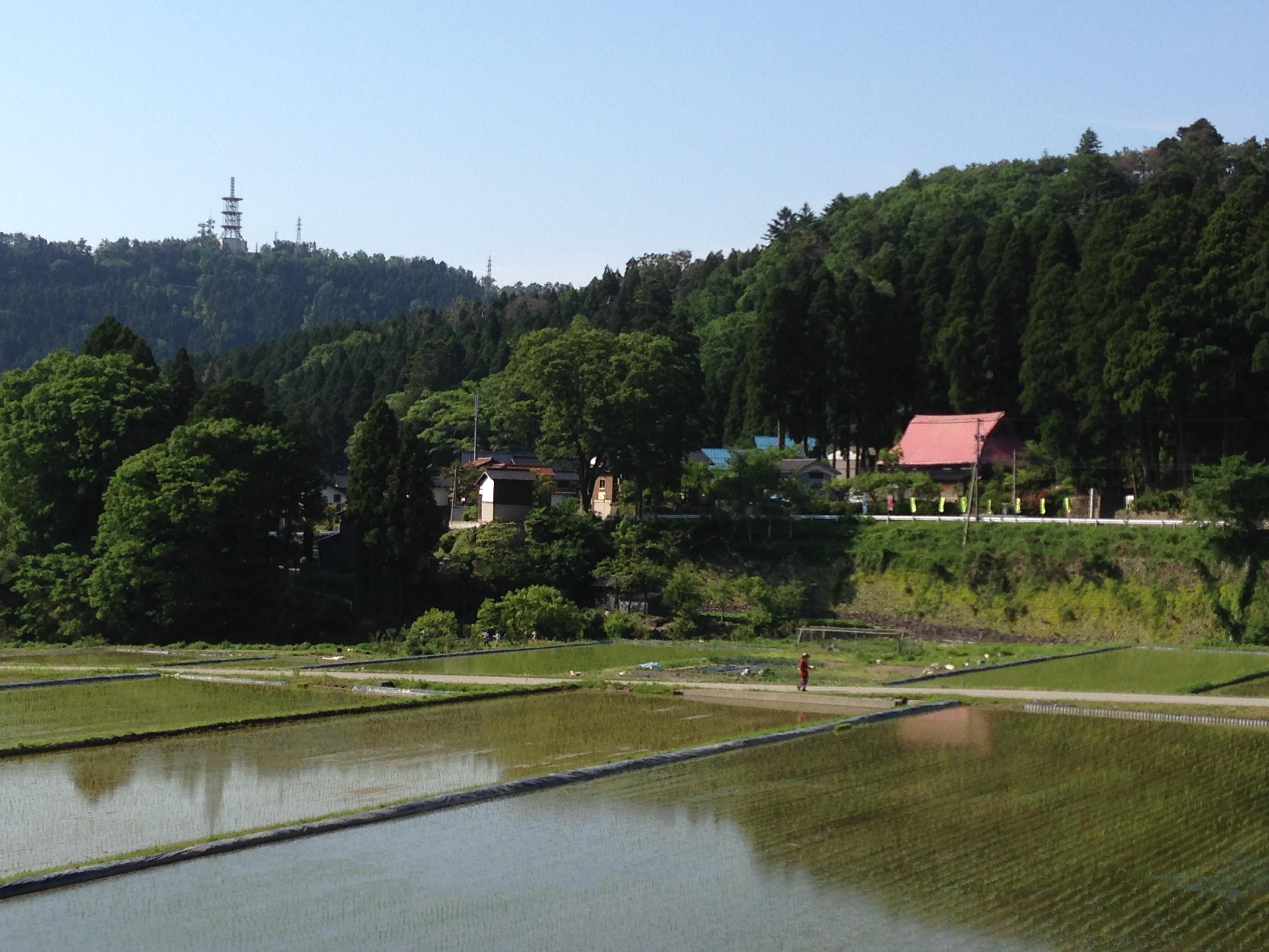 里山の笹川の風景
