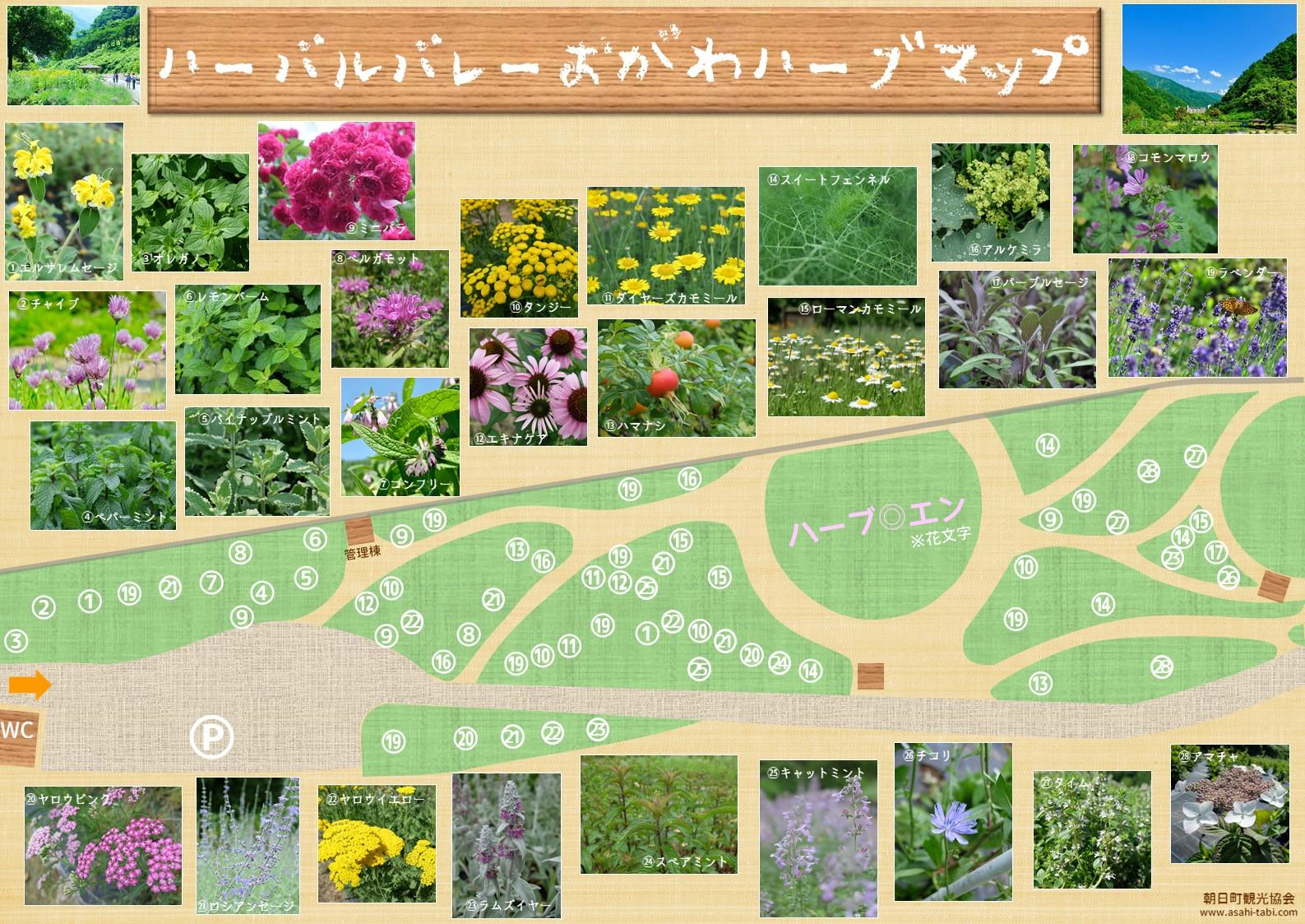 ハーブ園散策MAP