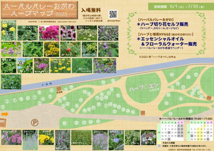 ハーバルバレーおがわハーブマップ2021